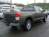 Pyrite Brown Mica Toyota Tundra in 2010