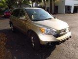 2008 Borrego Beige Metallic Honda CR-V EX-L 4WD #48268351
