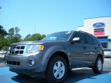 2011 Sterling Grey Metallic Ford Escape XLT V6 #48328361