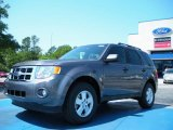 2011 Sterling Grey Metallic Ford Escape XLT #48328369