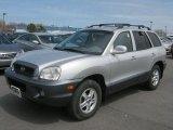 2003 Pewter Hyundai Santa Fe GLS 4WD #48387781