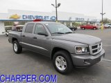 2010 Mineral Gray Metallic Dodge Dakota Big Horn Crew Cab 4x4 #48387864