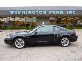 2001 Black Ford Mustang Bullitt Coupe #48387603