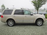 Light French Silk Metallic Lincoln Navigator in 2007