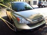 2009 Borrego Beige Metallic Honda CR-V EX-L #48430976