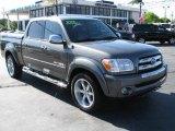 2005 Phantom Gray Pearl Toyota Tundra SR5 Double Cab #48431245