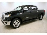 2010 Toyota Tundra Platinum CrewMax 4x4 Data, Info and Specs