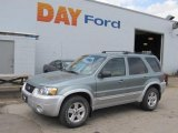2006 Titanium Green Metallic Ford Escape Hybrid 4WD #48460563