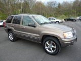 2002 Jeep Grand Cherokee Woodland Brown Satin Glow