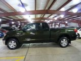 2010 Spruce Green Mica Toyota Tundra TRD Double Cab 4x4 #48461018