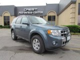 2010 Steel Blue Metallic Ford Escape Limited #48502746