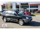 2003 Black Obsidian Hyundai Santa Fe GLS #48520108