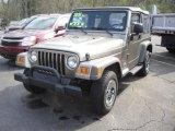 2006 Light Khaki Metallic Jeep Wrangler SE 4x4 #48520200