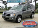 2011 Sterling Grey Metallic Ford Escape XLT V6 #48521270