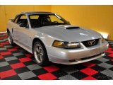 2002 Satin Silver Metallic Ford Mustang GT Convertible #48581557