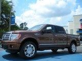 2011 Golden Bronze Metallic Ford F150 Platinum SuperCrew 4x4 #48663328