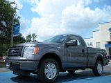 2011 Sterling Grey Metallic Ford F150 STX Regular Cab #48663329