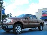 2011 Golden Bronze Metallic Ford F150 XLT SuperCrew 4x4 #48663337