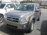 2011 Sterling Grey Metallic Ford Escape XLT #48663571
