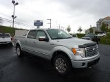 2010 Ingot Silver Metallic Ford F150 Platinum SuperCrew 4x4 #48731643