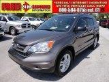 2010 Urban Titanium Metallic Honda CR-V EX #48814952