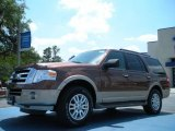 2011 Golden Bronze Metallic Ford Expedition XLT #48866637