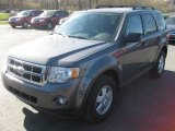 2011 Sterling Grey Metallic Ford Escape XLT #48925141