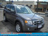 2011 Sterling Grey Metallic Ford Escape XLT V6 4WD #48925018