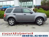 2011 Sterling Grey Metallic Ford Escape XLT V6 4WD #48924885