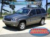2002 Graphite Metallic Jeep Grand Cherokee Laredo 4x4 #48981489