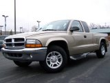 2004 Light Almond Pearl Metallic Dodge Dakota SLT Club Cab #4886858
