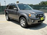 2011 Sterling Grey Metallic Ford Escape XLT #49090811