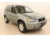 2006 Titanium Green Metallic Ford Escape Limited 4WD #49136110