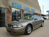 2001 Mineral Grey Metallic Ford Mustang V6 Coupe #49136351