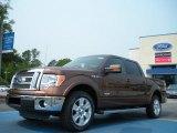 2011 Golden Bronze Metallic Ford F150 Lariat SuperCrew #49195045