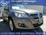 2011 Alpine Gray Metallic Volkswagen Tiguan SE #49195642