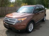 2011 Golden Bronze Metallic Ford Explorer XLT #49245199