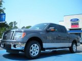 2011 Sterling Grey Metallic Ford F150 XLT SuperCrew #49299917