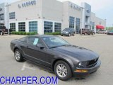 2007 Alloy Metallic Ford Mustang V6 Premium Coupe #49299757