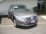 2011 Alpine Gray Metallic Volkswagen Tiguan SE 4Motion #49361781