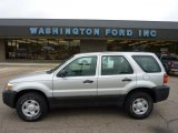 2006 Silver Metallic Ford Escape XLS 4WD #49390551