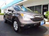 2009 Urban Titanium Metallic Honda CR-V EX-L 4WD #49418147