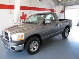 2006 Mineral Gray Metallic Dodge Ram 1500 ST Regular Cab #49469073