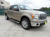 2011 Pale Adobe Metallic Ford F150 Texas Edition SuperCrew #49514784