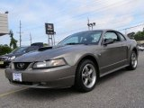 2001 Mineral Grey Metallic Ford Mustang GT Coupe #49515188