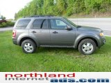 2011 Sterling Grey Metallic Ford Escape XLT V6 4WD #49565769