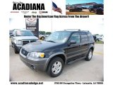 2006 Black Ford Escape XLT V6 #49565883