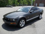 2007 Alloy Metallic Ford Mustang V6 Premium Coupe #49650929
