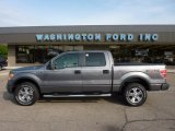 2010 Sterling Grey Metallic Ford F150 FX4 SuperCrew 4x4 #49657195