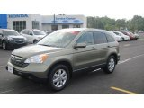 2009 Green Tea Metallic Honda CR-V EX-L #49657219